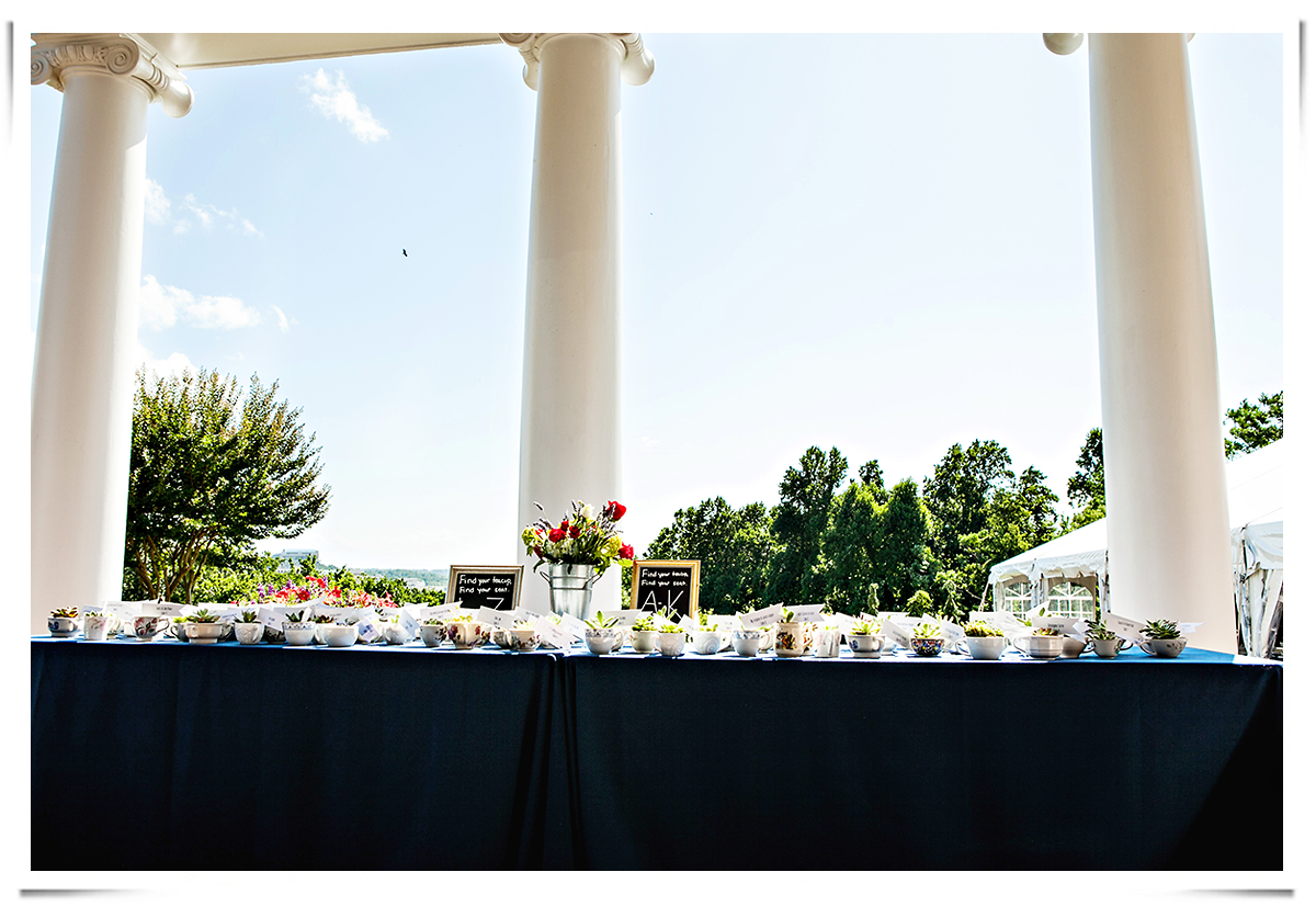oxon-hill-manor-4th-of-july-wedding-19.png